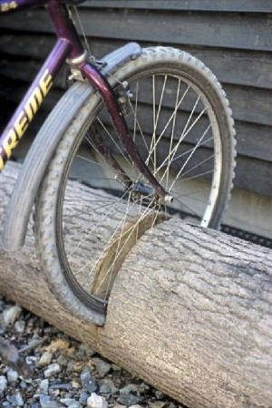 bikerack.jpg.w300h450