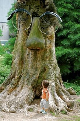 treebikeeyes