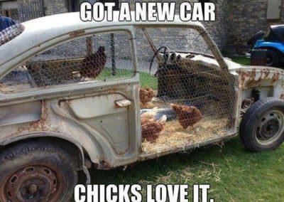 car coop