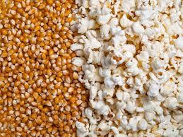 Explore Popcorn